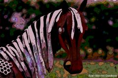 20150029 Paarden Donderen