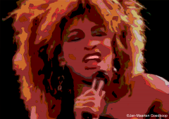 Tina Turner Tonight